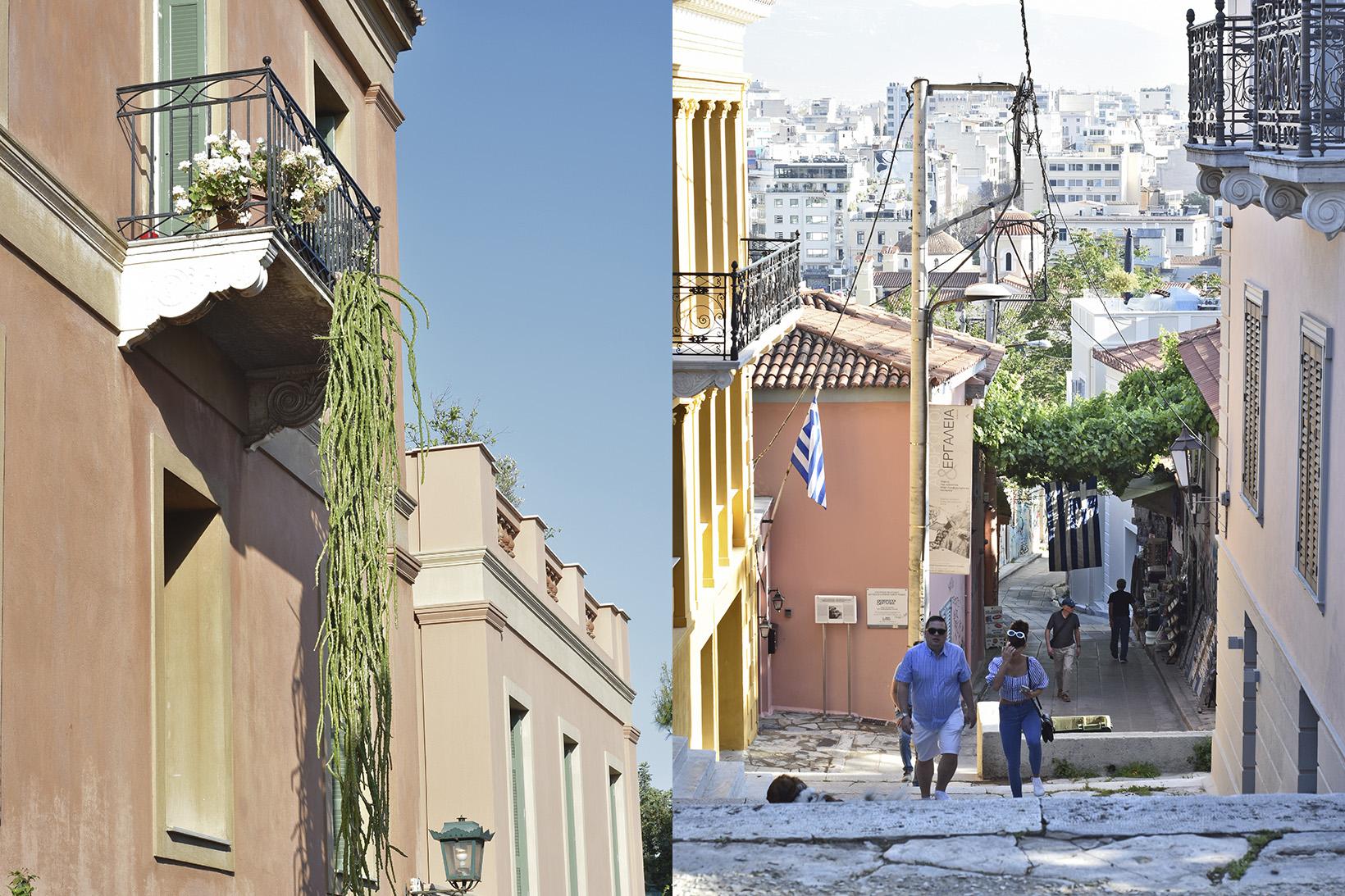 Улици Атина, кактус